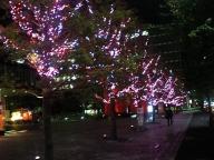 クリスマスイルミネーション@サンケイビル