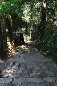 熊野古道 (大門坂)