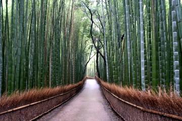 竹のトンネル@嵯峨野